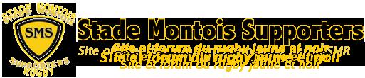 Allez le Stade Montois
